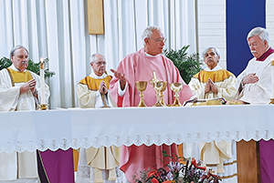 celebrating 50 yrs of priesthood of father george fagan